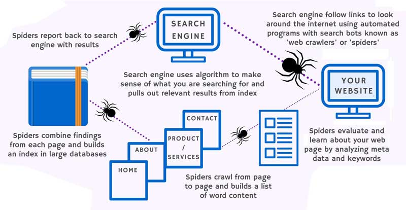 اینفوگرافیک موتورهای جستجو